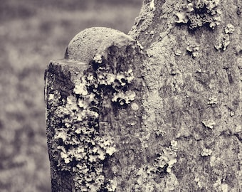 Cemetery Headstone Photograph, black and white photography, art photography