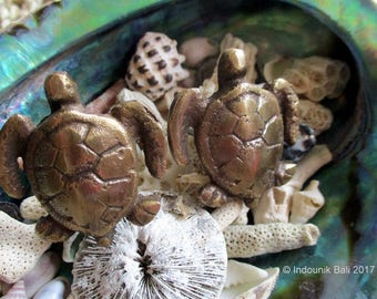 Turtle Small Brass Drawer Pull or Cabinet Knob 38mm 1pc
