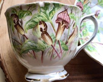 Royal Albert Jack in the Pulpit Tea Cup / Vintage Tea Cup