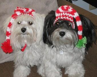 SLEEPY SANTA Stocking Hat - Christmas pet hat - Humorous - 2 to 20 lb pets- Made to Order