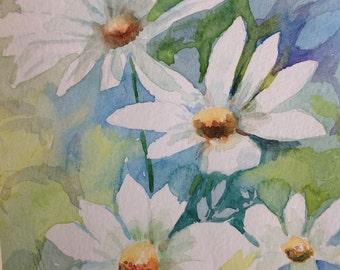 original watercolour painting of Daisies