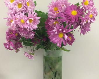 50% OFF, rooted Pink Chrysanthemums, garden plant