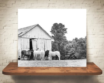 Horse Barn Photograph - Fine Art Print - Black & White Photo - Farmhouse Decor - Wall Art Decor - Equine Photography - Pictures of Horses