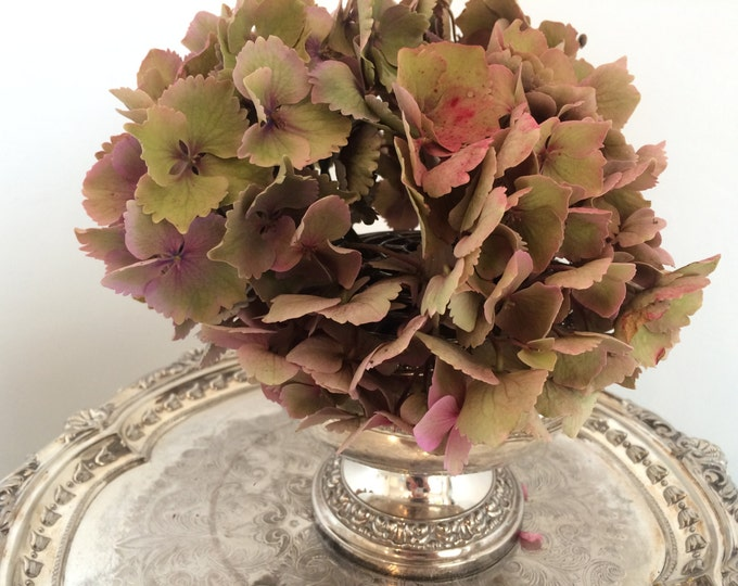 Silver plated vintage rose bowl, lovely for display fresh or dried flowers, ideal for vintage weddings