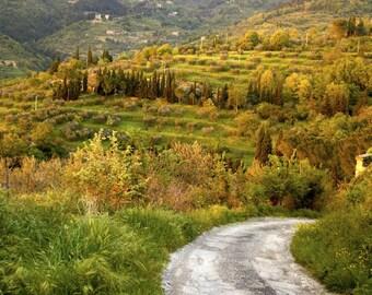 Tuscany Photo, Italy Landscape Road Spring Umbria Italian Countryside Wall Art Home Decor Fine Art Print ita21