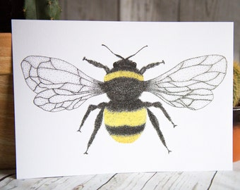 SALE - Bumble Bee - Insect - Art Print