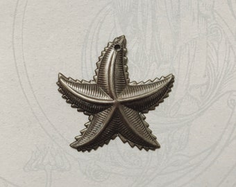 Hand Oxidized Starfish with Hole