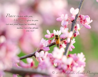 Scripture Wall Art // Canvas Gallery Wrap // Honeybee on Redbud // John 14:27