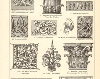 1897 Plant Ornaments Original Antique Engraving to Frame