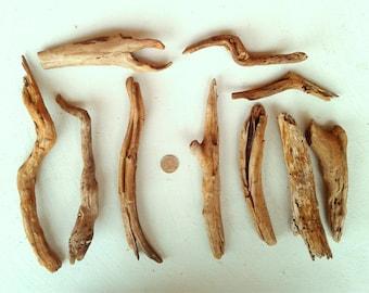 10 Orange Driftwood Pieces - FREE US SHIPPING