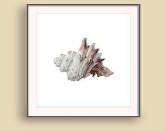 Beach 2017 art print, Coastal wall prints, Summer Wall Art 2017, Vacation art prints, Summer Wall prints, Seashell prints