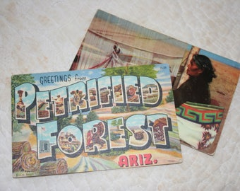 Vintage Souvenir Post Cards, Pair of Postcards,  Paper Ephemera, Petrified Forest, Navajo Rug Weaver , Arizona Post Cards, 1980's  Postcards