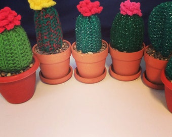 Crochet Cactus, Home Decor, Amigurumi, Cactus, Cacti
