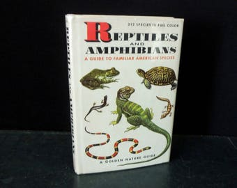 1953 Reptiles and Amphibians Vintage A Golden Nature Guide Book - First Edition - Hardcover Book Reference Identification