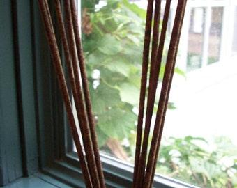 Incense Sticks - 3 Packs of 10 - Pumpkin Spice, Sunflowers, Nag Champa, Avalon