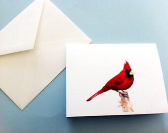 Watercolor Bird Card - Red Cardinal