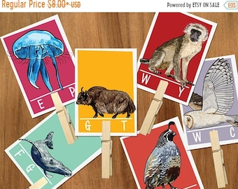 Animal Alphabet ending letter sound clip cards -Preschool ABC flash cards,Ending letters,Summer activities,busy bag,early learning,classroom