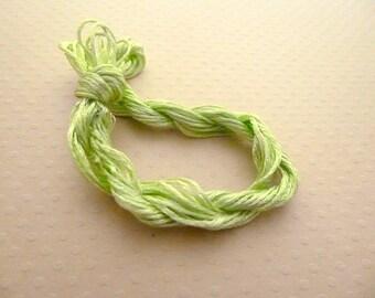 Echevette leading embroidery green silk/rayon - thread FBSR 1207