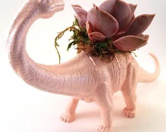 Brontosaurus Dinosaur Planter + Succulent \\ Succulent Planter \\ Home Decor \\ Gift \\ Office Decor \\ Desk Plant