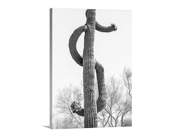 Dollar Sign, Cactus Art, Desert Photography, Southwest Decor, Saguaro Picture, Money Symbol, Arizona Gift, Western Picture, Dollar Symbol