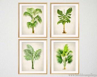 Palm Print Set of 4, Botanical Prints, Palm Tree Wall Art, Tropical Decor, Palm Wall Art, Beach House Art,