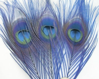 ROYAL BLUE Peacock Feather Eyes (2 size option)(RF) feather for boutonnieres,earrings,wedding bouquets,millinery hat,corsage,fascinator