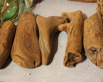 5 pieces of driftwood burl knots from Northern California and the Pacific Ocean
