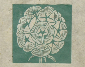 Scabious seed head mini linocut print