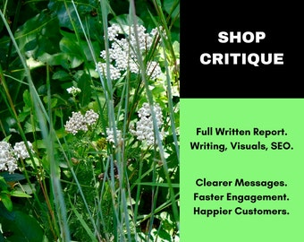Etsy Shop Critique - Written Etsy Critique - Etsy Writing Service - Etsy Shop Review - Etsy Copywriting Service - Etsy Writer - Copy Writer