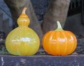 Orange and Green Gourd Se...