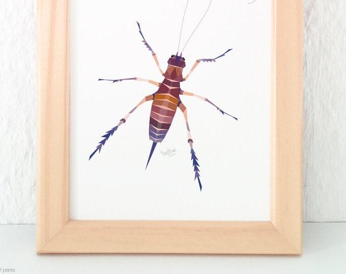 Weta insect print, Weta painting, Weta wall art, New Zealand Weta, Kiwi wildlife, Kiwiana animals, Geometric print, Giant weta, Insect art
