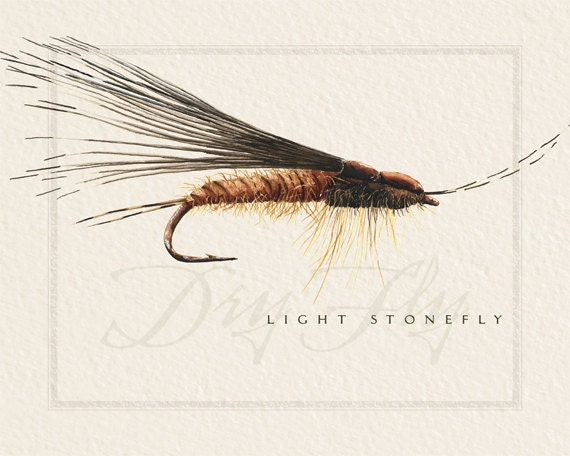 fly fishing prints, 8x10 prints, nymph flies, dry flies, fisherman prints, fisherman birthday, fly fisherman retirement, fly fishing art