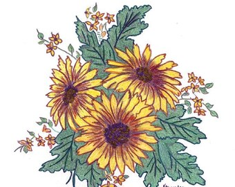 Original Drawing of Daisies Created with Colored Pencils and Marker