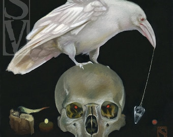 White Raven and Skull Original Oil Painting by Susan Van Sant 6x6 occult skull crow raven art