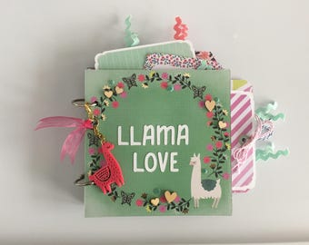 Llama Love Mini Chipboard Scrapbook Album