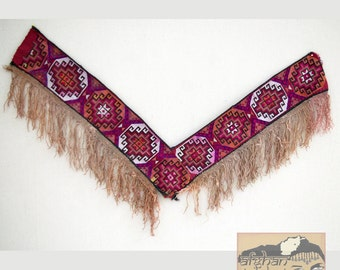 Vintage Uzbek Textile: Tribal Wallhanging, Saye Gosha #6