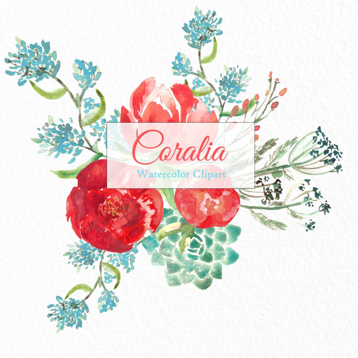 Peony Coral, watercolor clipart, Digital clipart hand drawn ...