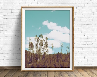"landscape photography, large art, printable art, instant download printable art, trees, art, modern, nature photography - ""Above the Forest"""