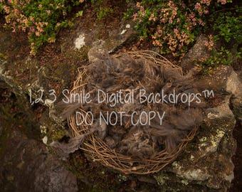 Brown Nest Digital Backdrop
