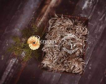 Digital Newborn Basket/dark brown/brown fur/digital backdrop/newborn prop/newborn background/sunflower/fall