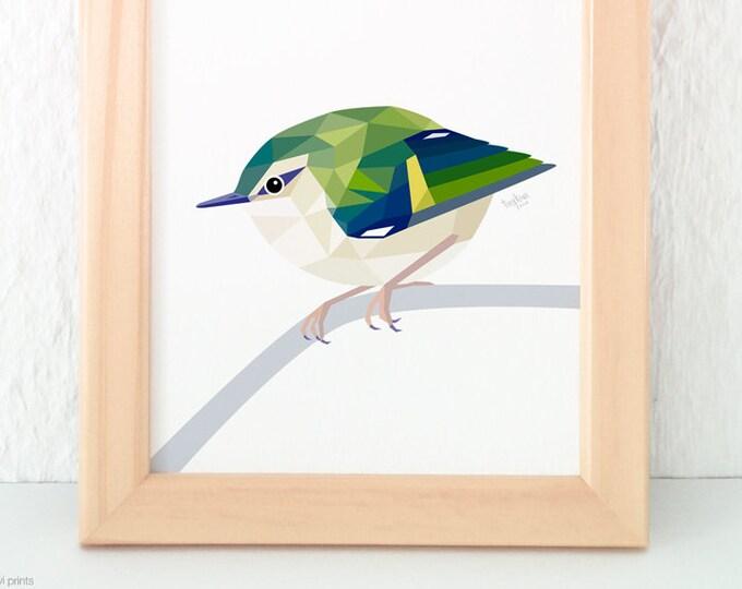 Rifleman bird print, Rifleman art, New Zealand Rifleman, Kiwi birds, Kiwiana,  New Zealand birds, New Zealand wildlife art, Geometric print