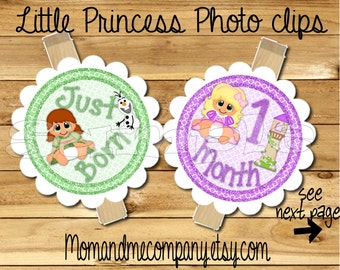 Little Princess photo clip banner newborn to 12 months Baby Princess birthday month banner first year banner Princess Baby RIBBON INCLUDED