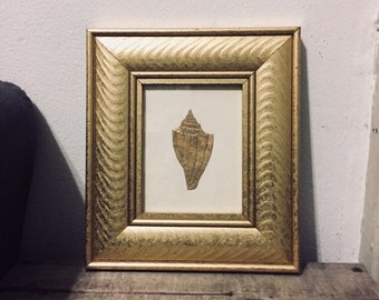 Bronze Seashell Framed Art