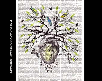 Human HEART as TREE of LIFE art print Woodland Forest anatomical anatomy cardiology medical science on dictionary book page wall decor 8x10