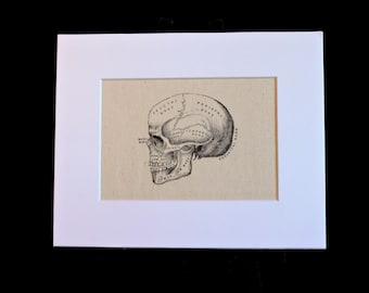 Human skull illustration on canvas - medical art, obscure, curiosity, spooky, macabre, Halloween, unusual decor, anatomy art