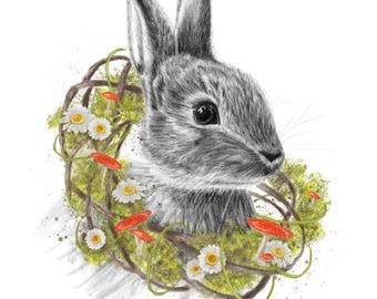 Frühling Hase digitale Illustration