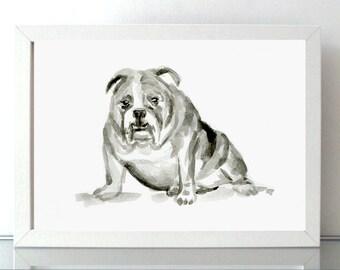 English Bulldog Painting - Giclee Print - Dog Drawing Animal painting - Dog Art sumi e style - aquarelle dog  Michelle Dujardin Zodiac