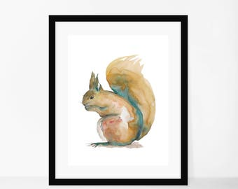Framed Squirrel Watercolour Print