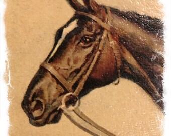 Sam Savitt Horse Print