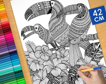 Coloring poster - EXOTIC TOUCANS (16.5 inches)